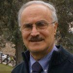 Profile picture of Paolo Rocchi